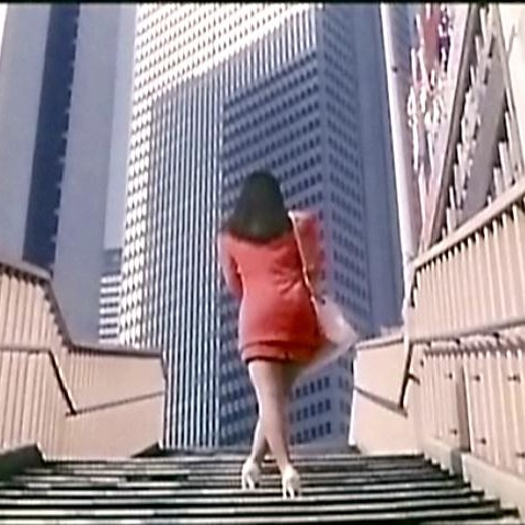 Pleasure Masturbation : New Wife Version, d'Hisayasu Satô (1993)