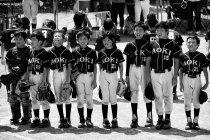 image salutation-baseball-jpg