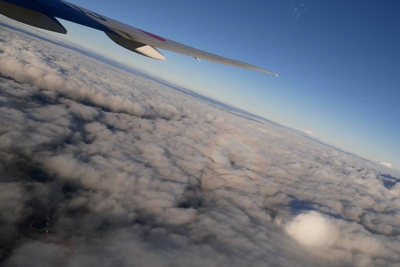 avion jal
